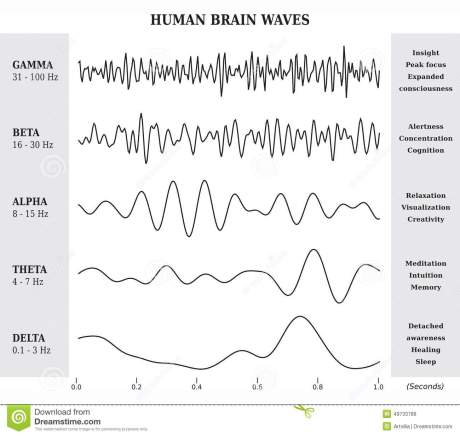 human-brain-waves-diagram-chart-illustration-black-white-49733789.jpg